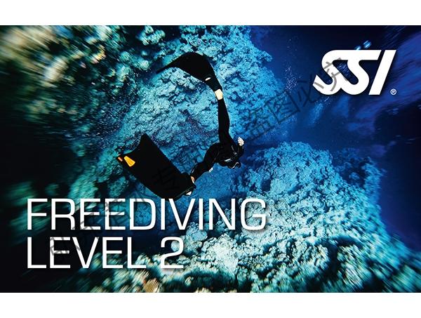 自由潜水level 2 课程