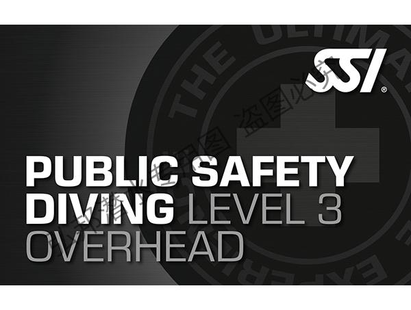公共安全level 3(技潜分支)