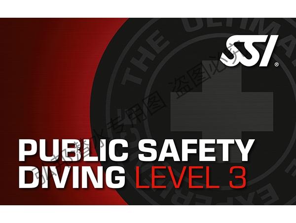 公共安全level 3