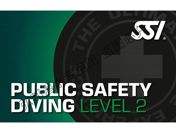 公共安全level 2