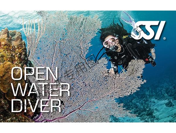 OW开放水域潜水员
