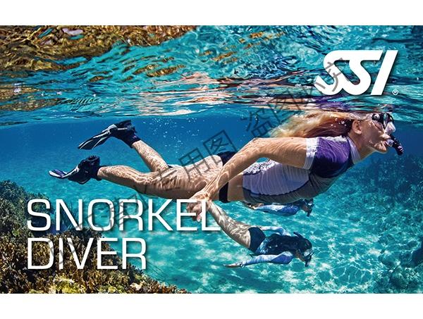 浮潜潜水员
