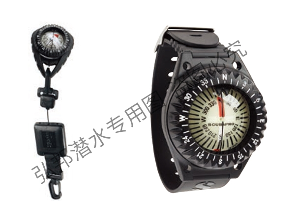 FS-2指南针