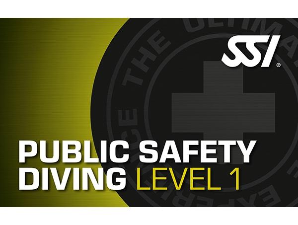 公共安全level 1